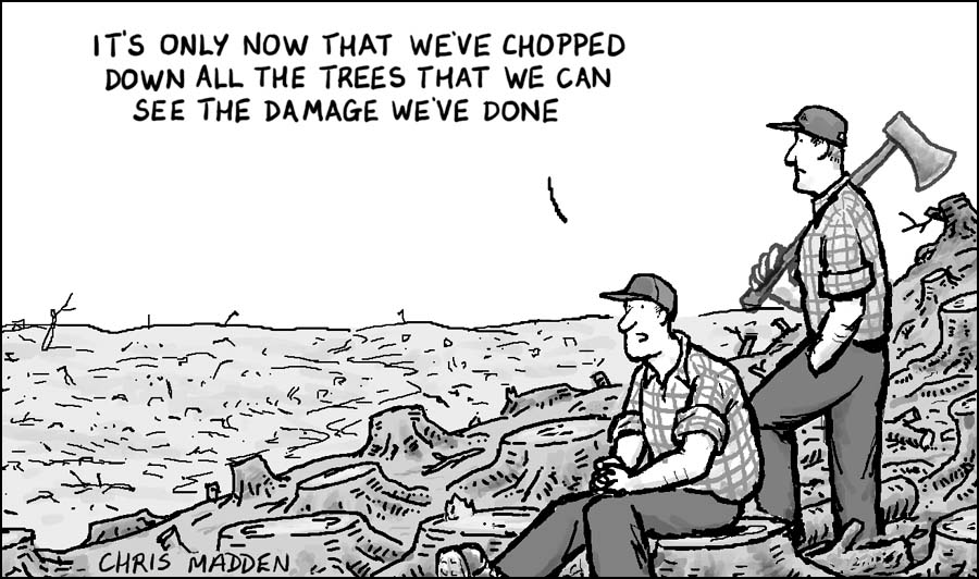 Deforestation cartoon