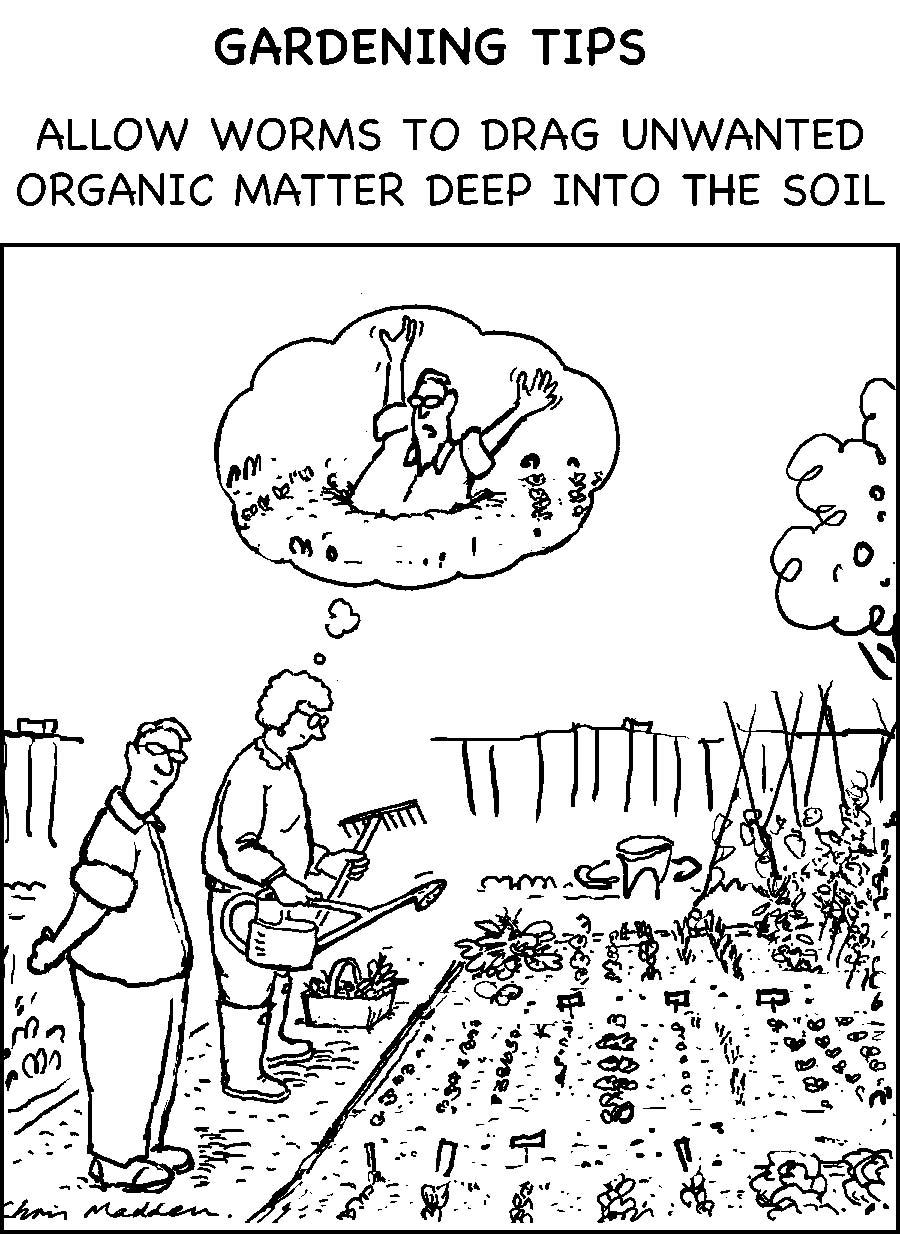 Organic gardening cartoon